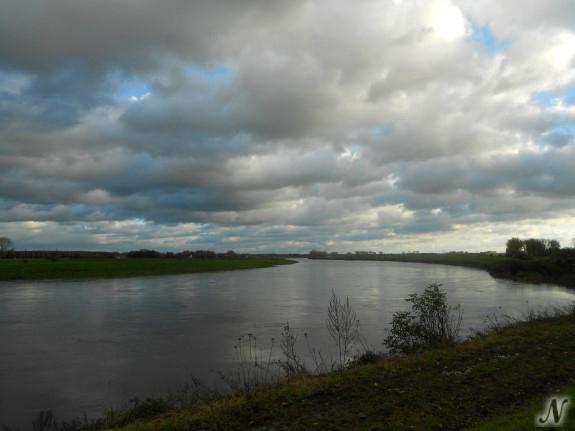 De Maas, Maaseik