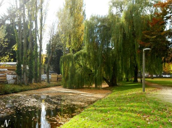 Stadspark Weert, Nederland
