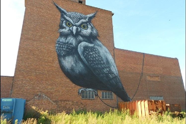HASSELT | Streetart door Pablo Delgado, ARYZ en ROA