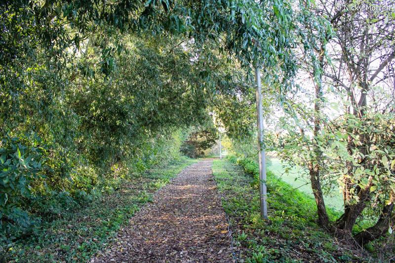 10000 stappen wandeling Sint-Truiden